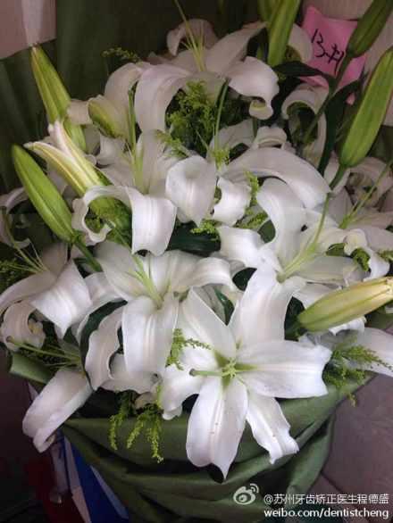 患者赠送正畸医生鲜花